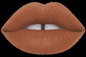 Shroom- brown tone