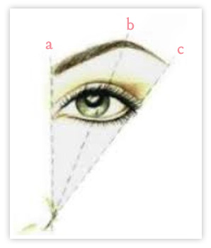brow-graphic2